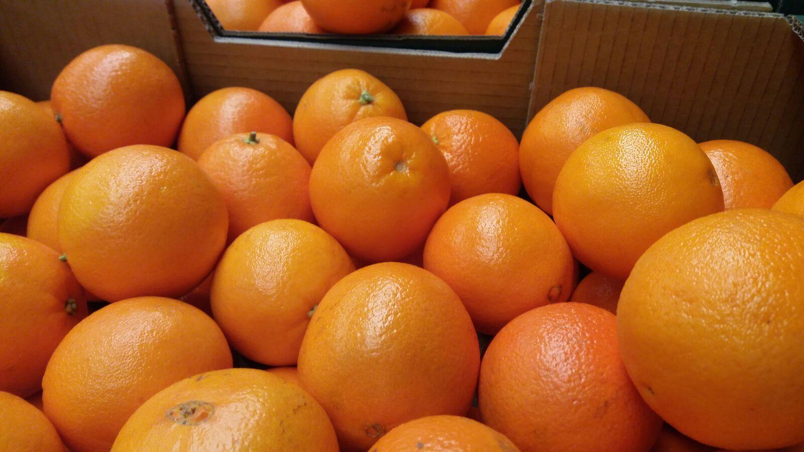 jus d'orange pour machines à jus
