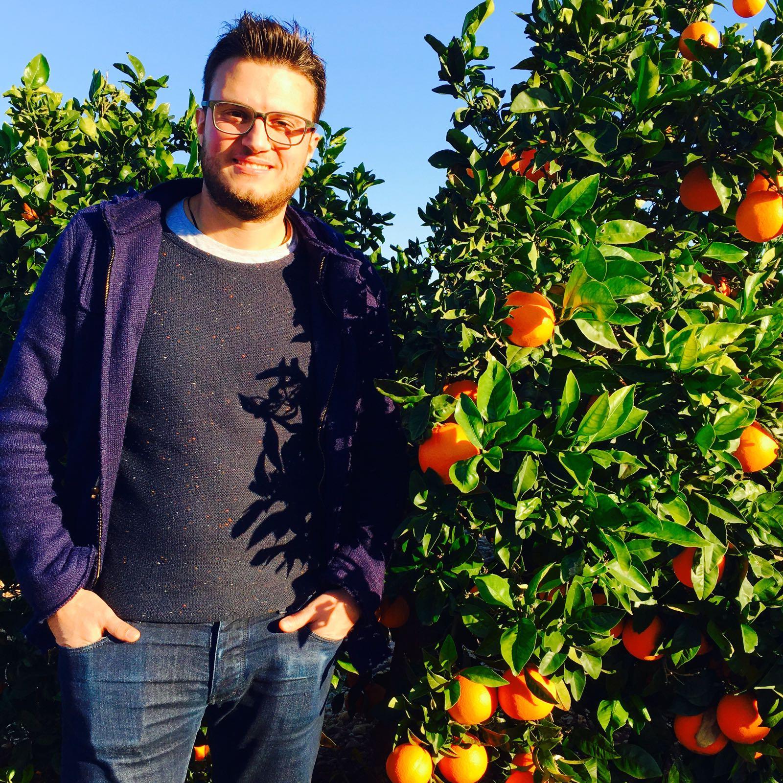 producteur d'oranges