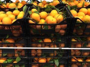naranjas sin tratamiento post cosecha