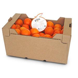 Cartón Kraft Zumo 15kg (P01)
