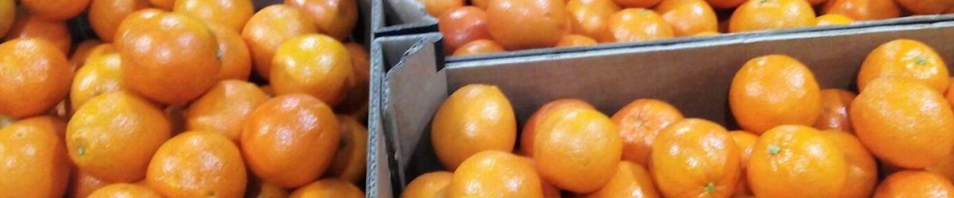 naranja-de-zumo-1200x480